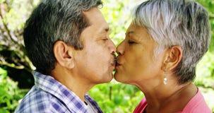 Pares mayores que se besan en parque metrajes