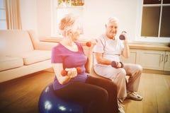 Pares mayores que se sientan en bolas de la aptitud con pesas de gimnasia Foto de archivo libre de regalías