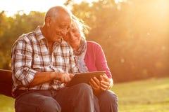 Pares mayores que se sientan en un banco de parque que mira la tableta Foto de archivo