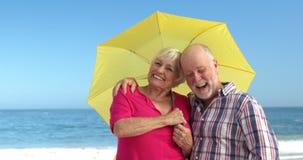 Pares mayores que sostienen el paraguas almacen de video