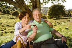 Pares mayores que tienen una comida campestre Imagenes de archivo