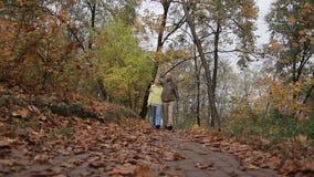 Pares mayores que toman un paseo en parque durante otoño almacen de video