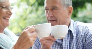 Pares mayores que tuestan las tazas mientras que comiendo el café 4k metrajes