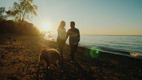 Pares multiétnicos que caminan con un perro cerca del mar o de un lago, en la puesta del sol almacen de video