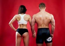 Pares musculares Imágenes de archivo libres de regalías