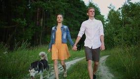 Pares no amor com um cão, Husky Malamute, floresta do por do sol vídeos de arquivo