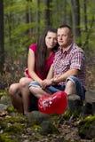 Pares no amor na floresta do verão Fotos de Stock