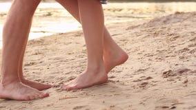 Pares no amor na praia video estoque