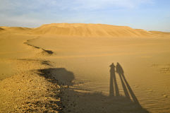 Pares no deserto fotografia de stock