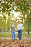 Pares no parque do outono Imagens de Stock Royalty Free