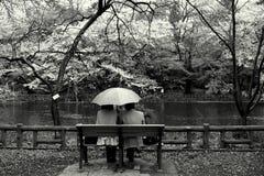 Pares no parque, tokyo Imagem de Stock Royalty Free