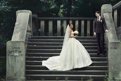 Pares novos à moda elegantes Fotografia de Stock Royalty Free