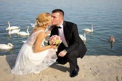 Pares novos agradáveis do casamento Foto de Stock