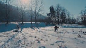 Pares novos bonitos do moderno que têm o divertimento no parque do inverno em um dia brilhante que abraça-se e o sorriso video estoque