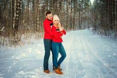 Pares novos bonitos no inverno nas madeiras, abraço, romance feliz fotografia de stock