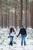 Pares novos bonitos que andam no inverno nevado Forest Embrace foto de stock