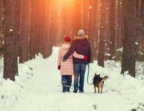 Pares novos com o cão que anda na floresta do inverno Fotos de Stock