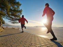 Pares novos de corredores durante o exercício regular fotos de stock royalty free