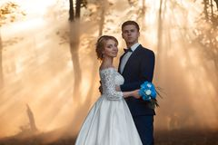 Pares novos de noiva loura com uma grinalda em sua cabeça em um vestido luxuoso e em um noivo do casamento branco longo bonito à fotos de stock