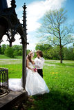 Pares novos do casamento no amor Imagens de Stock Royalty Free