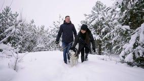 Pares novos do estilo que têm o divertimento no parque do inverno perto do lago com seu cão ronco do amigo em um dia brilhante qu video estoque