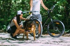 Pares novos dos ciclistas que andam no parque com um cão foto de stock
