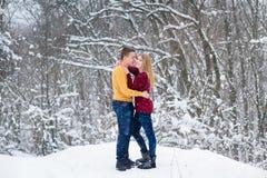 Pares novos na floresta do inverno fotografia de stock royalty free