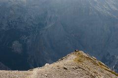 Pares novos nas montanhas Fotos de Stock