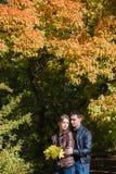 Pares novos no amor, abraçando, ramalhete do outono das folhas de bordo Fotos de Stock