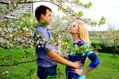 Pares novos no jardim do sakura no parque Foto de Stock