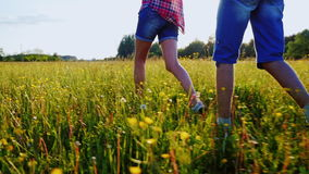 Pares novos que andam ao longo de um prado no por do sol, guardando as mãos O quadro mostra somente os pés filme