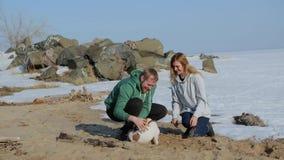 Pares novos que andam na praia com o cão praia da mola com neve video estoque