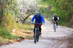 Pares novos que montam uma bicicleta fotografia de stock royalty free