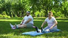 Pares obesos que hacen los ejercicios, comenzando junto forma de vida sana, ayuda metrajes