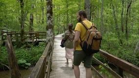 Pares que andam ao longo de um trajeto de floresta filme