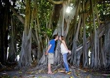 Pares que beijam sob a árvore Imagens de Stock