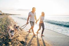 Pares que caminan con los perros en la playa Foto de archivo libre de regalías