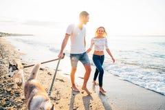 Pares que caminan con los perros en la playa Imágenes de archivo libres de regalías
