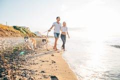 Pares que caminan con los perros en la playa Fotos de archivo