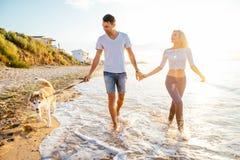 Pares que caminan con los perros en la playa Foto de archivo