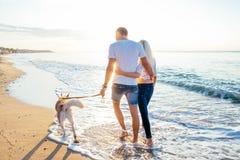 Pares que caminan con los perros en la playa Imagen de archivo libre de regalías