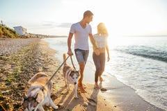 Pares que caminan con los perros en la playa Fotografía de archivo