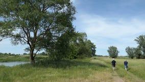 Pares que caminan a lo largo de una pequeña trayectoria a través de prados del paisaje del río de Havel en tiempo de verano Sauce metrajes