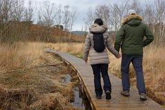 Pares que celebran caminar de las manos Imagen de archivo