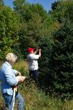 Pares que etiquetam árvores de Natal Imagem de Stock Royalty Free