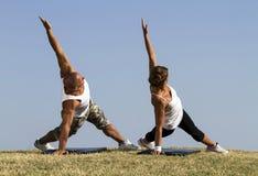 Pares que fazem a ioga na natureza Fotos de Stock