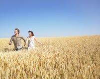 Pares que funcionam no campo de trigo Foto de Stock