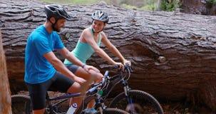 Pares que interagem ao dar um ciclo a bicicleta video estoque