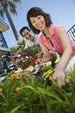 Pares que jardinam junto fotos de stock royalty free