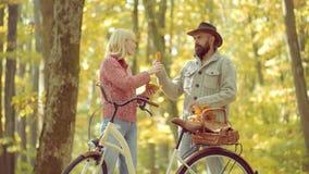 Pares que jogam nos pares do outono da floresta do outono Conceito rom?ntico e do amor filme